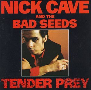 Nick_cave1
